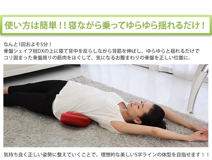 福辻式 寝ながら骨盤シェイプ枕 ロッピング