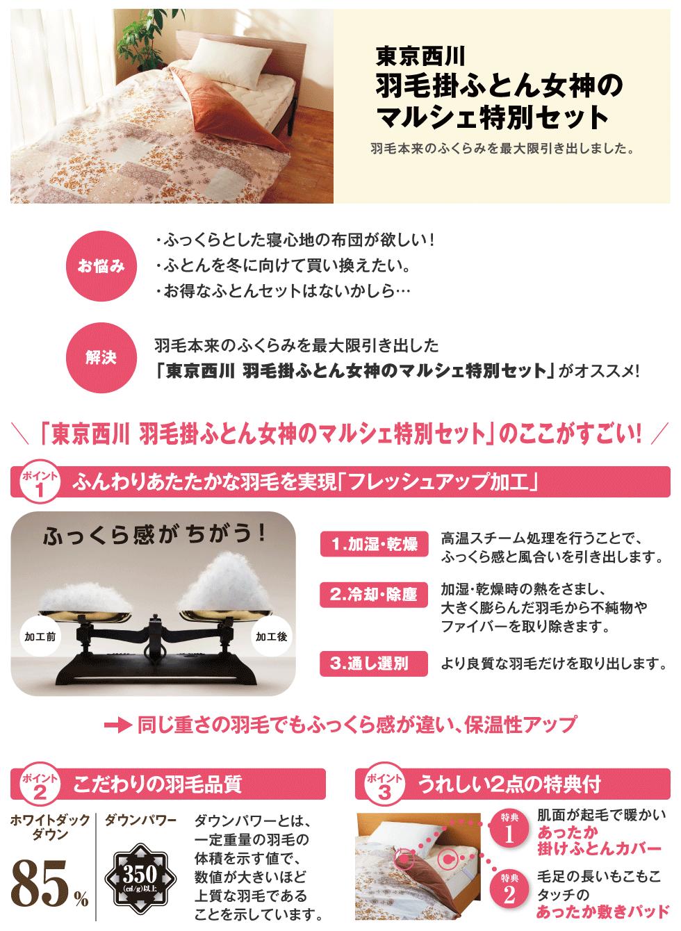 東京西川 羽毛掛ふとん